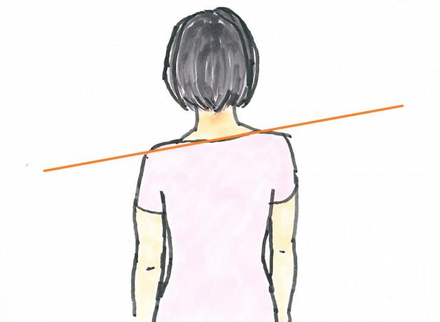 肩の高さの違い